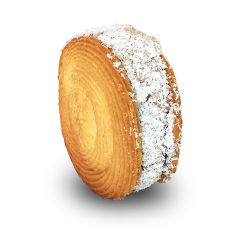 ICe Cream Cookie for web-CocoCrunch